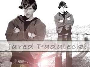 Jared 3